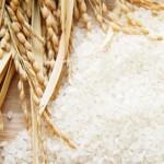 お米(10kg)を激安で買おう!